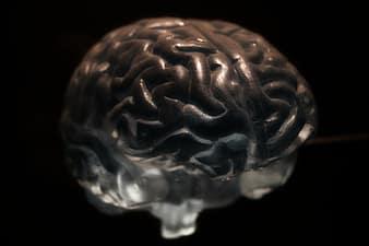 neurofeedback y aplicaciones clínicas