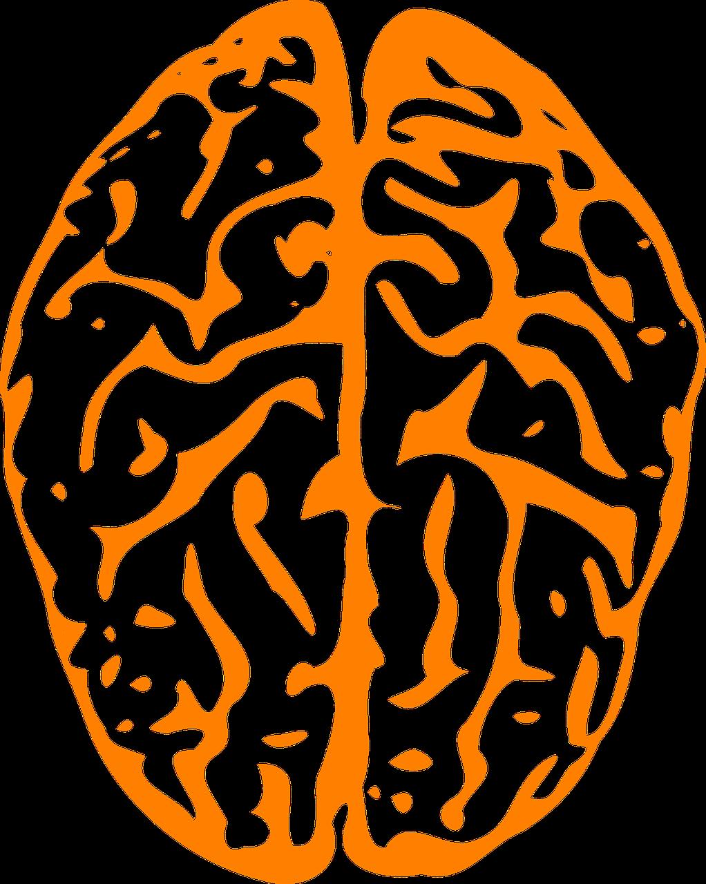 la especificidad de los tratamientos en neurofeedback
